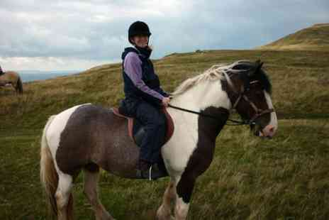 Grange Trekking - Pony riding lesson and trek for one person - Save 59%