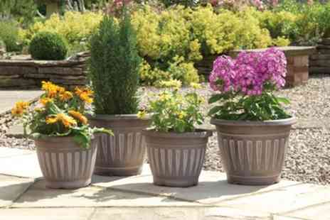 Groupon Goods Global GmbH - Four Pack Georgian Style Planters - Save 24%