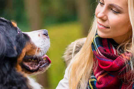 Centre of Excellence - Canine Behaviour Training Audio Course - Save 84%