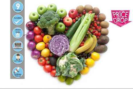 Centre of Excellence - Online mindful nutrition diploma course - Save 85%