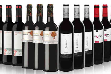 SanJamon - 12 Bottle Red Wine Collection Rioja, Ribera del Duero, Toro and Cigales - Save 47%