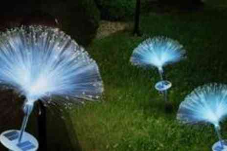 Garden Kraft - Two colour changing fibre optic Solar Lights - Save 50%