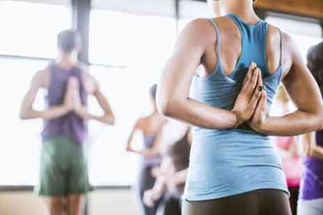 The Healthy Living - Five Yoga Classes - Save 65%