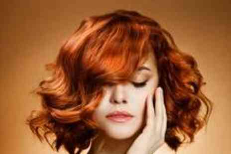 Exquisite Hair Salon - Half head of highlights or a full head of colour, plus a wash, cut and blow dry - Save 79%
