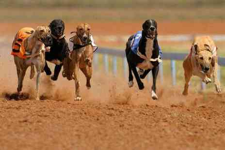 Love the Dogs - Night at the dog races for two with reserved seating tote win bet, drink, burger and programme each - Save 77%