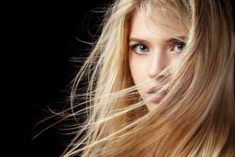 House of Glamour - Wash, cut & blow dry with T bar highlights or root tint - Save 42%