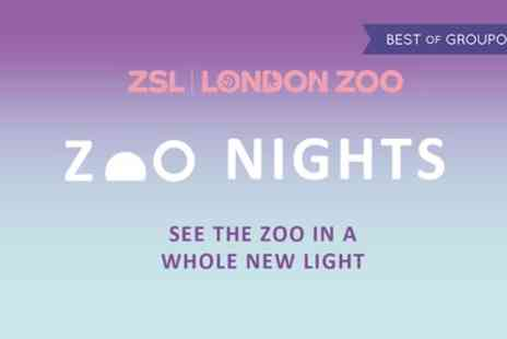 Zoo Nights - One adult ticket to Zoo Nights on 9 To 14 July - Save 14%