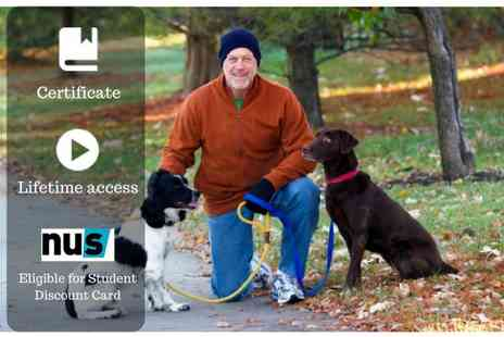 OfCourse - Online dog walking business course - Save 86%