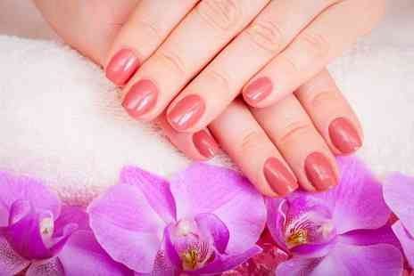 Beautique Hair and Beauty - Shellac manicure - Save 64%