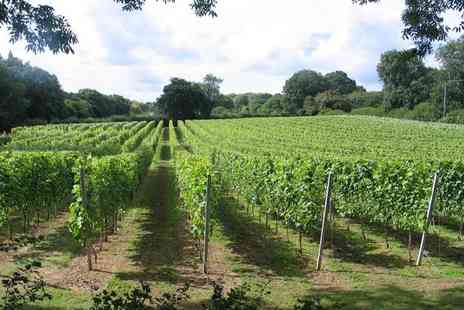 English Oak Vineyard - Two hour vineyard tour for one person including a wine tasting - Save 50%