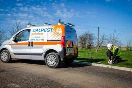 Dalpest Solutions - Flea or Bed Bug Control Treatment - Save 0%
