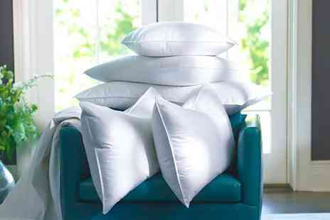 Home Furnishings Company - Two duck feather and down pillows - Save 88%