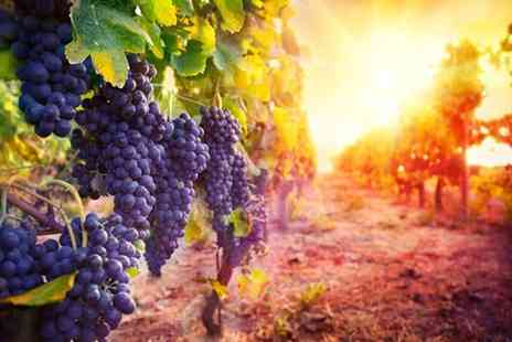 Activity Superstore - Vineyard tour and tasting session for two - Save 0%