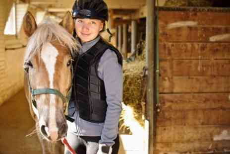 Buttercup Stables and Trekking - 30 Minute Introductory Horse Riding Lesson for One or Two - Save 47%