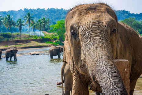Sri Lanka Round Tour - Remarkable Tour and All Inclusive Beach Stay - Save 0%