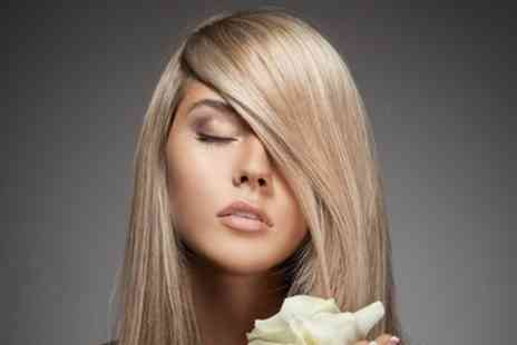 Oliver Cole - Restyle Cut with Blow Dry and Optional Half or Full Head of Highlights - Save 69%
