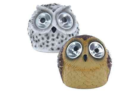 Groupon Goods Global GmbH - Solar Powered Owl Led Light in White or Brown - Save 44%