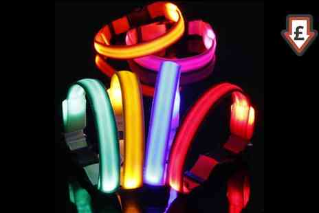Groupon Goods Global GmbH - Bunty LED Dog Collar - Save 57%