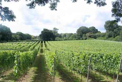 English Oak Vineyard - Vineyard Tour with Wine Tasting - Save 0%