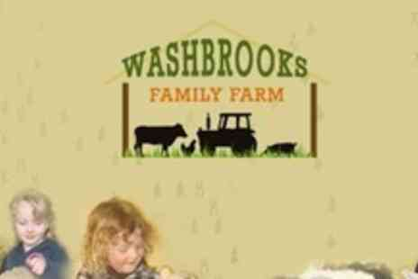 Washbrooks Family Farm - Farm Entry For Four With Cake Slice and Drink Each - Save 58%