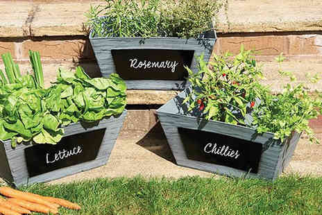 Gablemere - Chalkboard Crate Planters Pack of Three - Save 31%