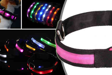 HK Betty Technology Co - Small Blue Pet Led Collar - Save 59%