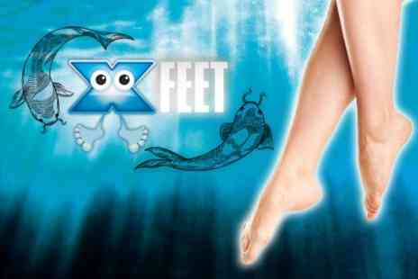 XFeet - Garra Rufa Fish Spa Treatment - Save 55%