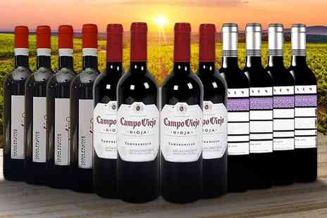 San Jamon - 12 bottle case of Spanish wine from the Dark Cherry Red collection - Save 58%