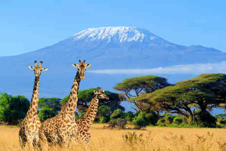 Serena Safari & Beach Extension - Two Night Safari and Sun Drenched Beach Stay - Save 0%