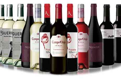 San Jamon - 12 Bottles of Assorted Red, White and Rose Wines - Save 54%