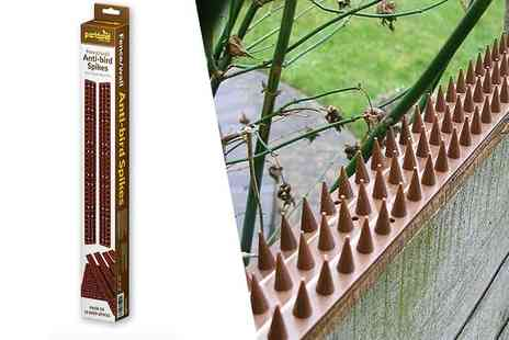 Zoozio - A pack of 10 fence or wall anti bird spikes - Save 77%