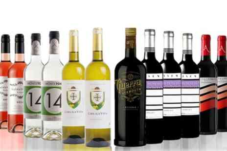 San Jamon - 12 Bottles of Mixed Red, White and Rose Wines - Save 37%