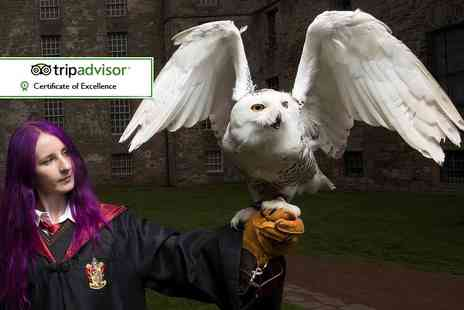 Scottish Owl Centre - Entry for two to the Scottish Owl Centre including a magical new flying display - Save 40%