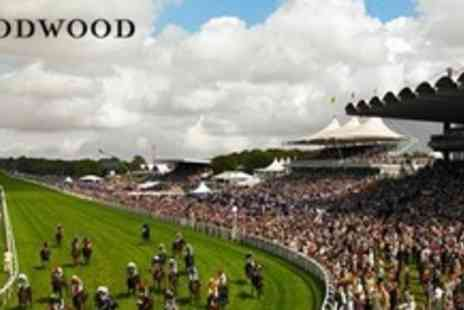 Goodwood Racecourse - Two Tickets to Racing and Mike Skinner DJ Set - Save 50%