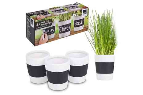 Groupon Goods Global GmbH - Three or Six Herb Plant Pots - Save 50%