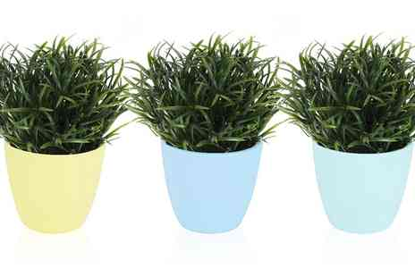 Groupon Goods Global GmbH - One or Two Sets of Three Differently Coloured Plant Pots in Choice of Sizes - Save 84%