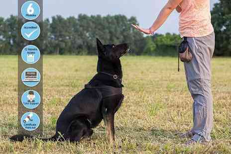 Holly & Hugo - Online ICOES accredited dog behaviour and training course - Save 91%