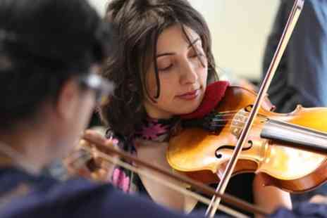 ViolinSchool - One Hour One to One Violin Lessons or One Three Hour Group Violin Lesson - Save 51%