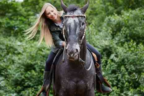Unicorn Equestrian - 30 or 60 Minute Horse Riding Lesson for One or Two - Save 0%