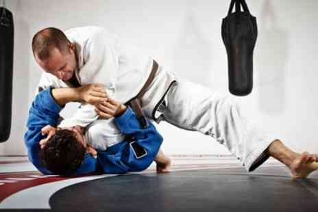 MMA Den - Brazilian Jiu Jitsu or Wrestling Five or Ten Classes - Save 80%
