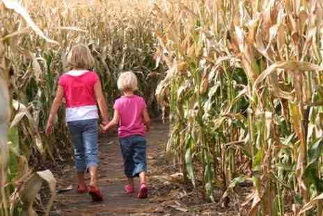 The Braydon Maize Maze - Maize Maze Entry for Two Adults or a Family - Save 50%