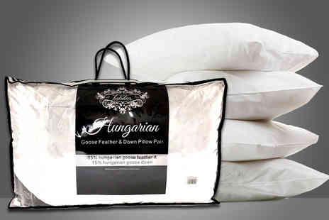 Home Furnishings Company - Pair of Hungarian goose feather and down pillows - Save 80%
