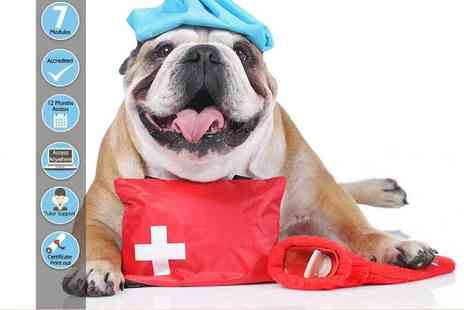 Oplex Careers - Online pet first aid and CPR course - Save 92%