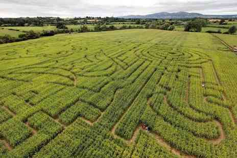The Great Worcester Maize Maze - Childs, adult or family ticket to The Great Worcester Maize Maze - Save 42%
