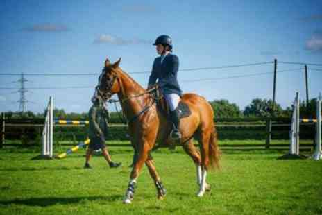 New Hill House Riding School - 30 Minute Introductory Horse Riding Lesson for One or Two - Save 47%