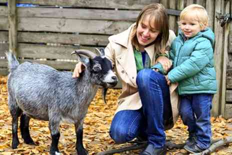 Langleybury Farm - Family Entry for Five to Langleybury Farm - Save 55%