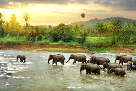 Heritance Tour - 10 Day Tour of Sri Lankas Highlights - Save 0%