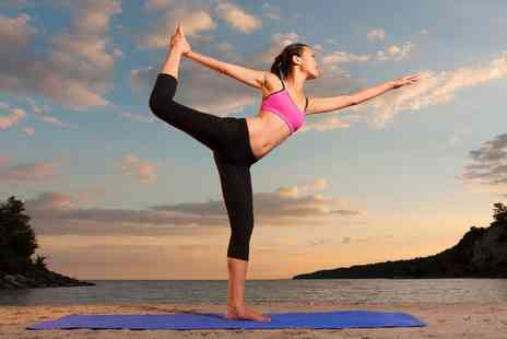 Online City Training - Celebrity Yoga and Well Being Online Course, Life Coaching Online Course or Both - Save 0%