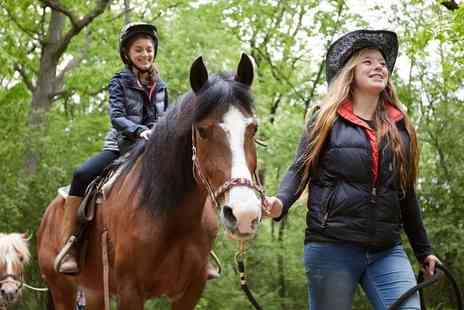 Bluesky Equestrian Centre - Group Pony Riding Lesson for One or Two Children - Save 0%