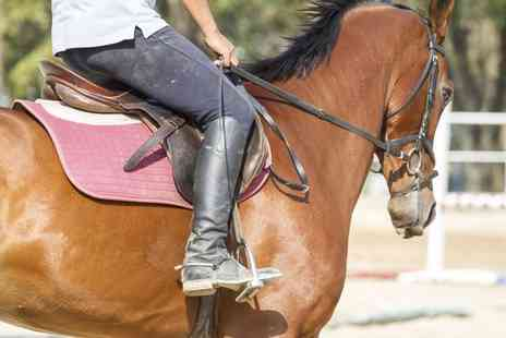 Bluesky Equestrian Centre - Private or Semi Private Horse Riding Lesson for One, Two or Three - Save 0%